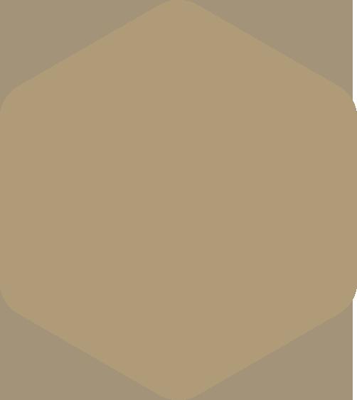https://adko.xyz/wp-content/uploads/2021/01/hexagon-orange-huge.png